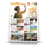 G1411-cover